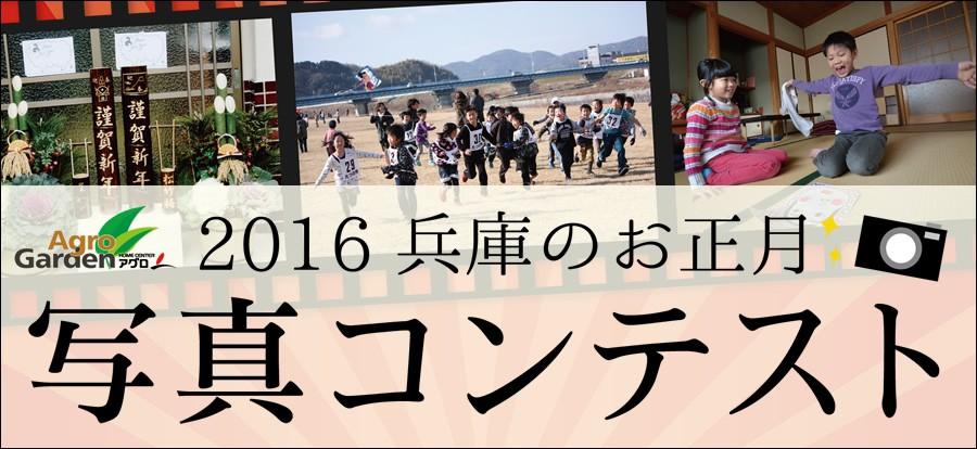 2016 兵庫のお正月写真コンテスト