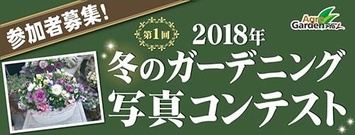 第1回 冬のガーデニング 写真コンテスト 参加者募集!