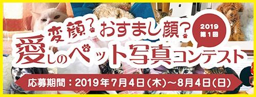 2019 第1回 変顔?おすまし顔? 愛しのペット写真コンテスト
