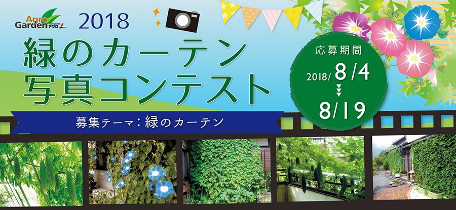 2018 緑のカーテン 写真コンテスト