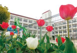 神戸市立 東須磨小学校