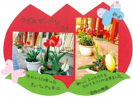 神戸市垂水区 愛徳幼稚園