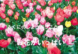特別賞-姫路市立 御国野小学校 様