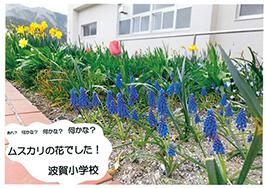 ムスカリ賞-宍粟市立 波賀小学校 様
