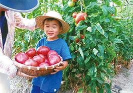 「トマトいっぱい!」