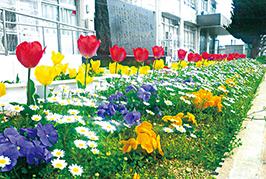 アグロ賞-姫路市立 余部小学校 様