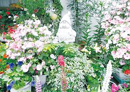 「花は癒し」