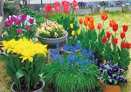 「春の歓び」